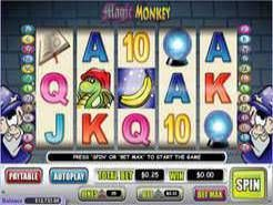 Magic Monkey Slots